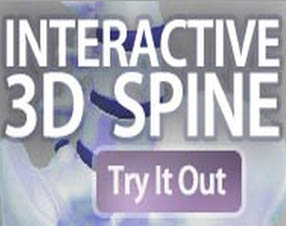 Interactive 3D Spine by ChiroHosting