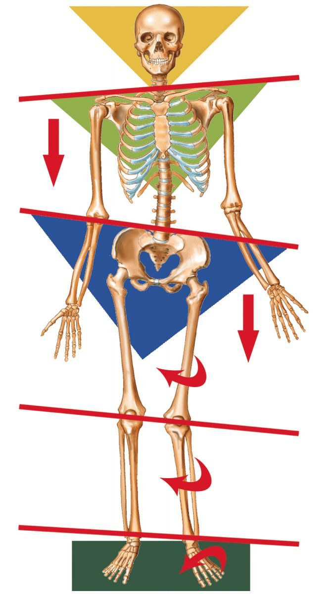 Orthotics to help low back pain St George UT