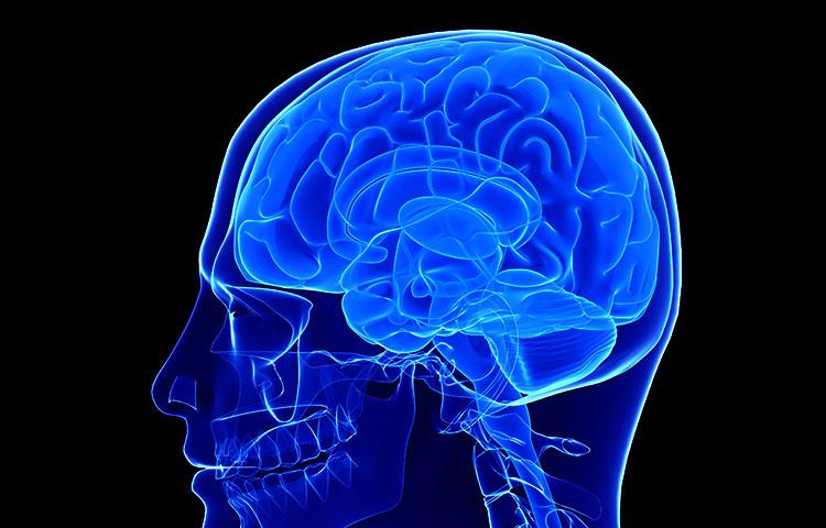 Alcohol Raises Risk of Brain Injury Death   Brain Injury ...